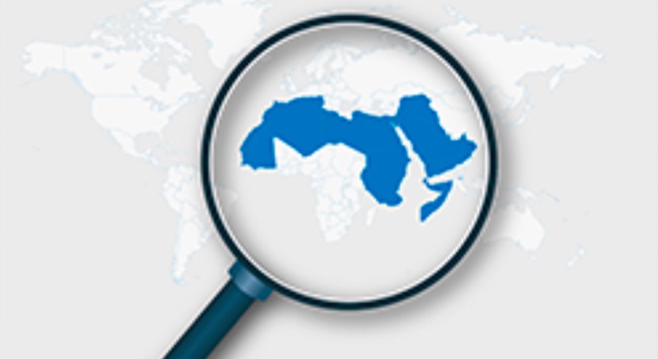 2014 - الراصد العربي للحقوق الاقتصادية والاجتماعية الحماية الاجتماعية