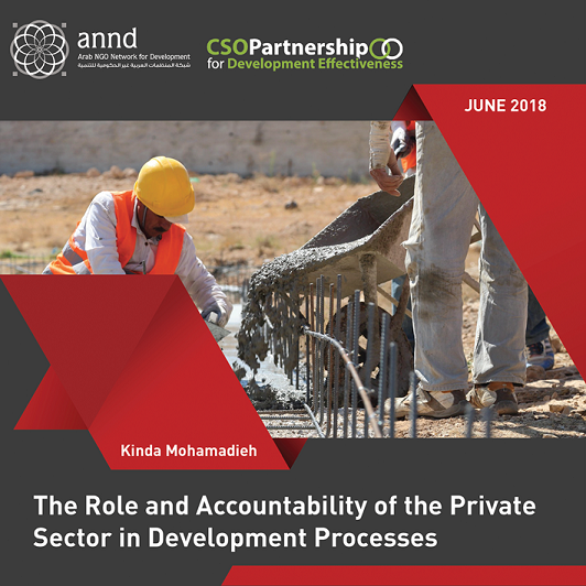 The Role and Accountability of the Private Sector in Development Processes
